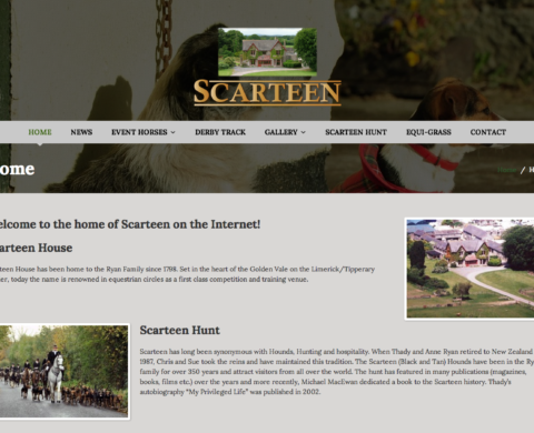 Scarteen Website