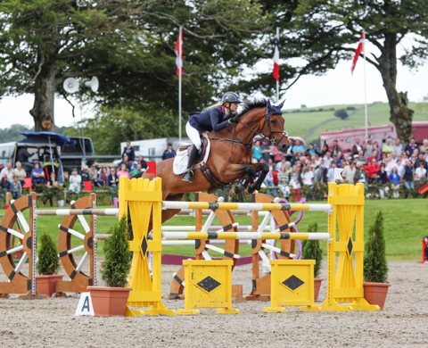 Millstreet Horse Show 2013