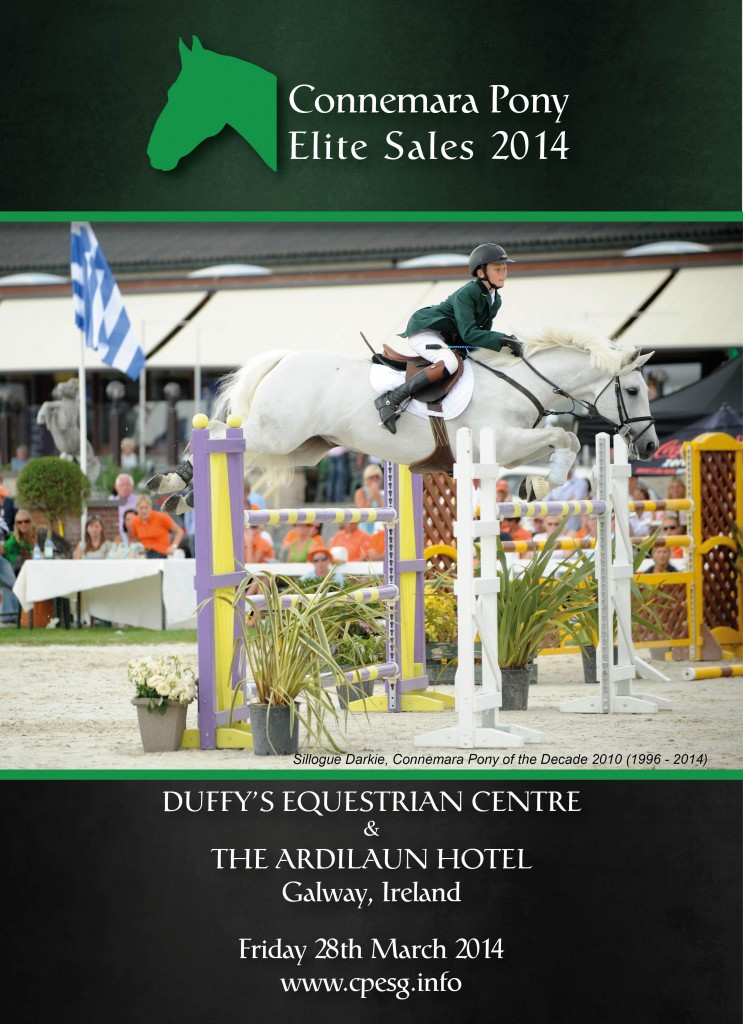 Connemara Pony Elite Sale 2014
