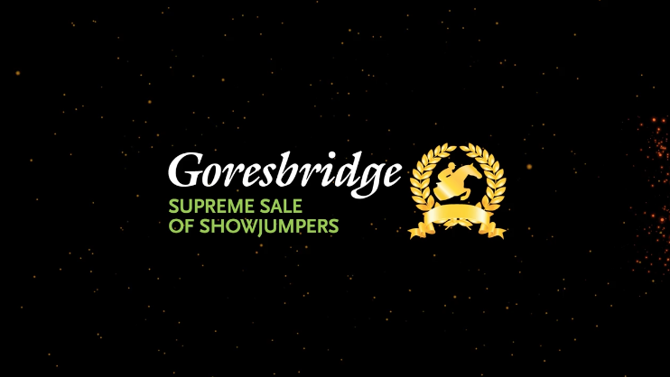Goresbridge Supreme Sale of Showjumpers