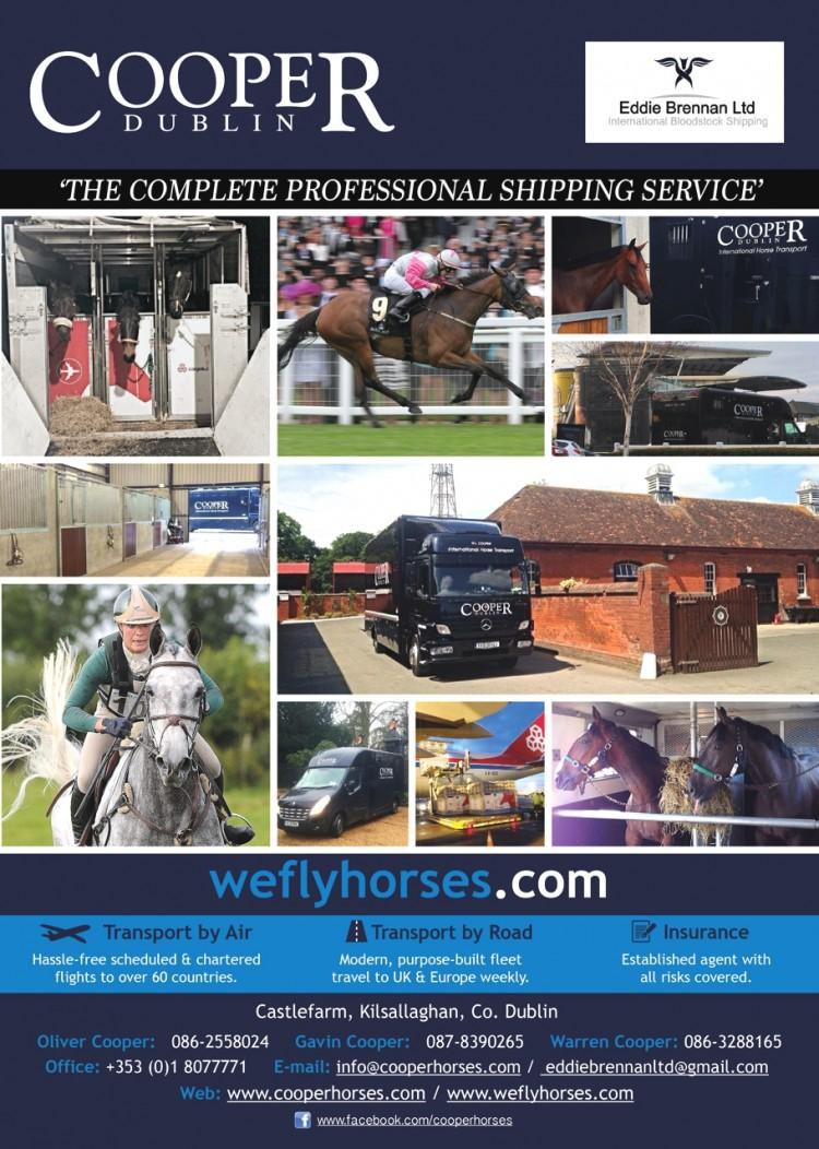 Cooper Equine Transport