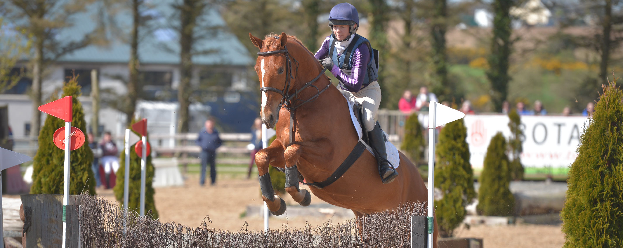 Wexford Equestrian - Stepping Stones (1)