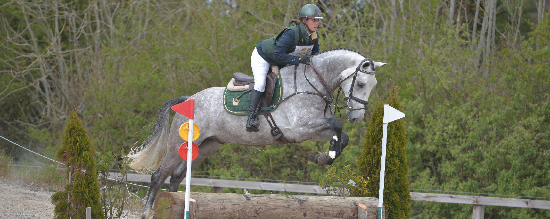 Wexford Equestrian - Stepping Stones Final