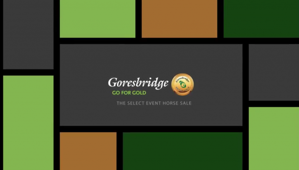 Goresbridge Go for Gold Sale 2016