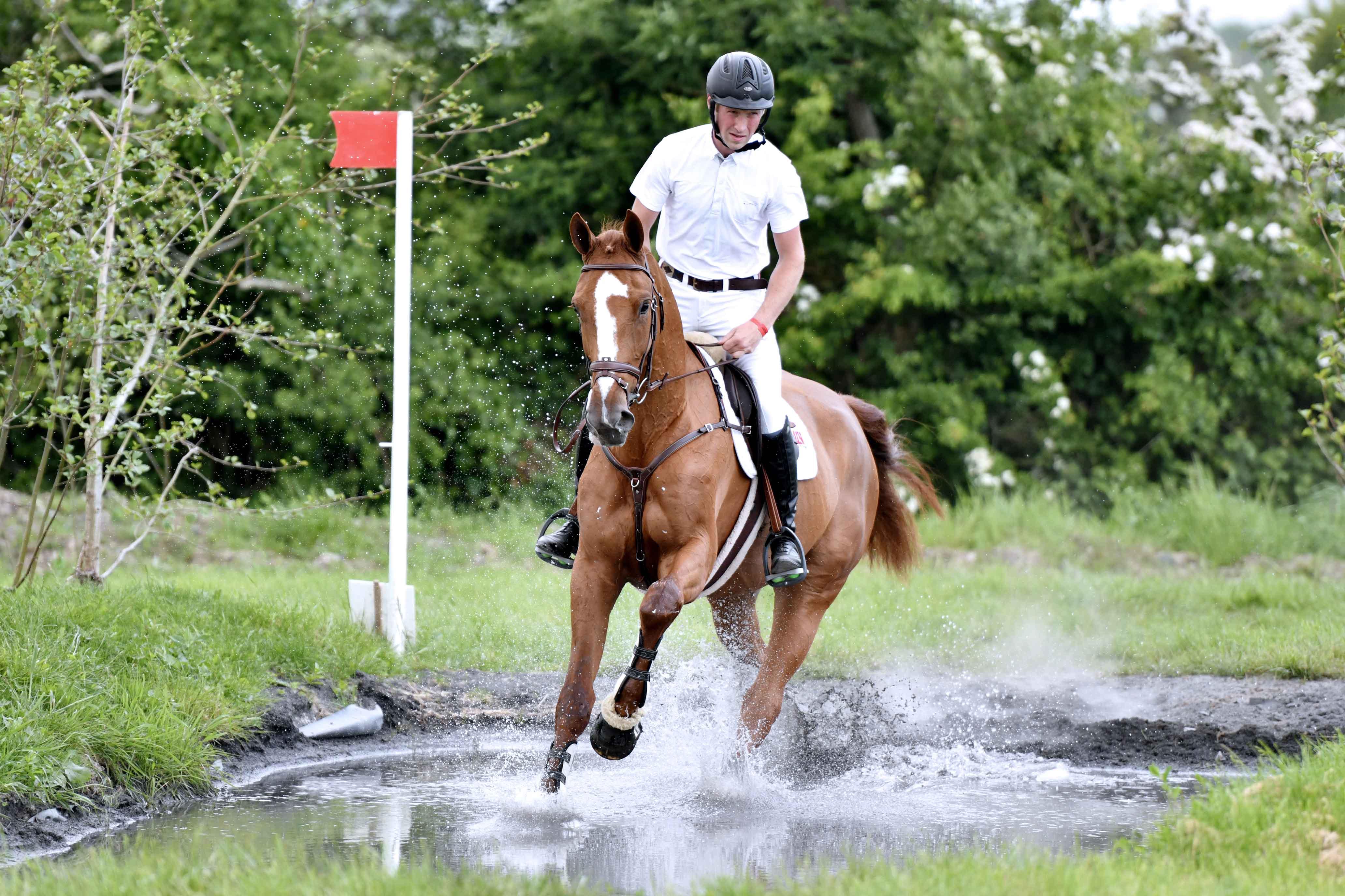 Goresbridge / Tattersalls Select Event Horse Sale