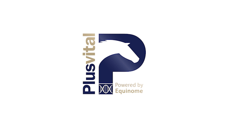 Plusvital – Johnny Murtagh