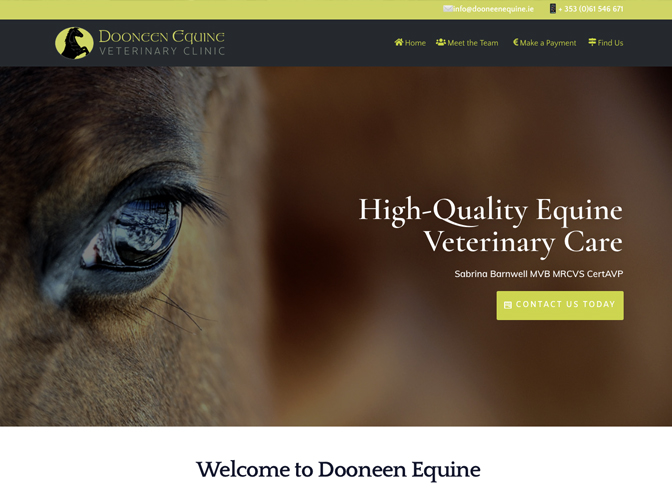 Dooneen Equine Veterinary Clinic